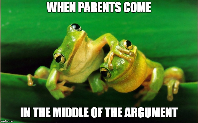 We're fine (Frog Week June 4-10, a JBmemegeek & giveuahint event!) | WHEN PARENTS COME IN THE MIDDLE OF THE ARGUMENT | image tagged in giveuahint,jbmemegeek,frog week,argument | made w/ Imgflip meme maker