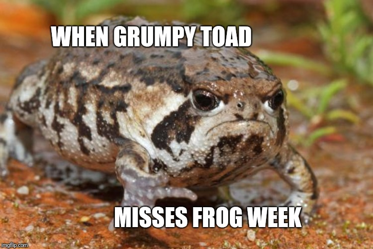 WHEN GRUMPY TOAD MISSES FROG WEEK | made w/ Imgflip meme maker