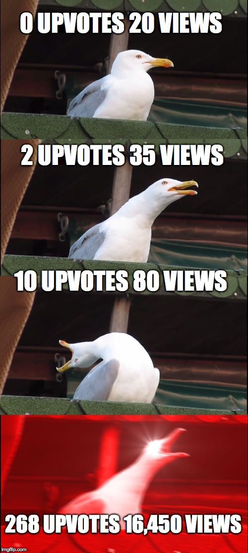 this feels like my meme cycle on imgflip  | 0 UPVOTES 20 VIEWS 2 UPVOTES 35 VIEWS 10 UPVOTES 80 VIEWS 268 UPVOTES 16,450 VIEWS | image tagged in memes,inhaling seagull,upvotes,views,imgflip | made w/ Imgflip meme maker
