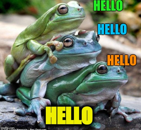 We're fine (Frog Week June 4-10, a JBmemegeek & giveuahint event!) Three Stooges | HELLO HELLO HELLO HELLO | image tagged in frog,frogs | made w/ Imgflip meme maker