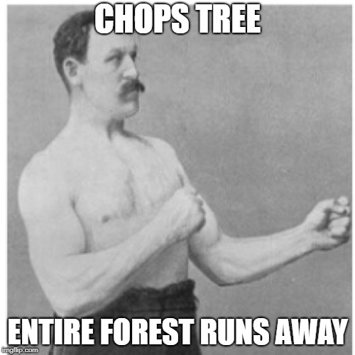 SHOOPING FOR MEN | CHOPS TREE ENTIRE FOREST RUNS AWAY | image tagged in memes,overly manly man | made w/ Imgflip meme maker