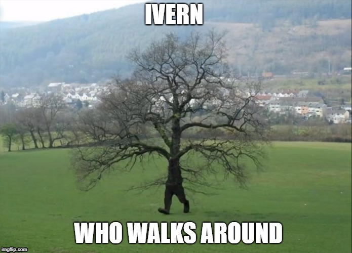 Ivern | image tagged in league of legends | made w/ Imgflip meme maker