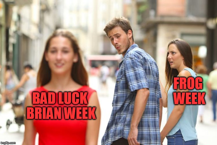 Distracted Boyfriend Meme | BAD LUCK BRIAN WEEK FROG WEEK | image tagged in memes,distracted boyfriend | made w/ Imgflip meme maker