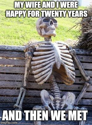 Waiting Skeleton Meme | MY WIFE AND I WERE HAPPY FOR TWENTY YEARS AND THEN WE MET | image tagged in memes,waiting skeleton | made w/ Imgflip meme maker