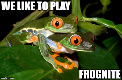 Don't Hate the Player | WE LIKE TO PLAY FROGNITE | image tagged in memes | made w/ Imgflip meme maker