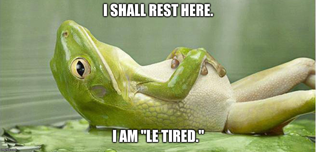 "Tired frog is tired. | I SHALL REST HERE. I AM ""LE TIRED."" 