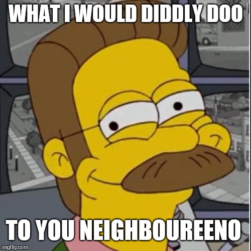 WHAT I WOULD DIDDLY DOO TO YOU NEIGHBOUREENO | made w/ Imgflip meme maker