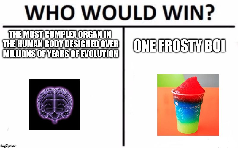 Who Would Win? | THE MOST COMPLEX ORGAN IN THE HUMAN BODY DESIGNED OVER MILLIONS OF YEARS OF EVOLUTION ONE FROSTY BOI | image tagged in memes,who would win | made w/ Imgflip meme maker