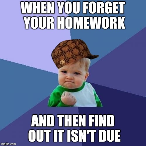 Success Kid Meme | WHEN YOU FORGET YOUR HOMEWORK AND THEN FIND OUT IT ISN'T DUE | image tagged in memes,success kid,scumbag | made w/ Imgflip meme maker