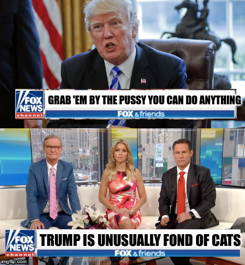 Getting a new template out there | GRAB 'EM BY THE PUSSY YOU CAN DO ANYTHING TRUMP IS UNUSUALLY FOND OF CATS | image tagged in fox spins trump news,new template,trump,real fake news | made w/ Imgflip meme maker