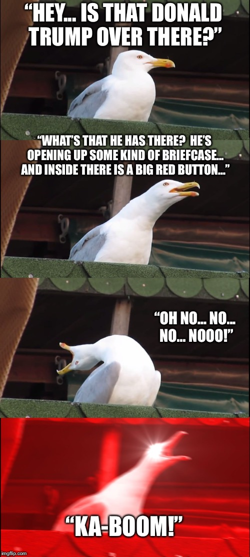 "Inhaling Seagull Meme | ""HEY... IS THAT DONALD TRUMP OVER THERE?"" ""WHAT'S THAT HE HAS THERE?  HE'S OPENING UP SOME KIND OF BRIEFCASE... AND INSIDE THERE IS A BIG RE 