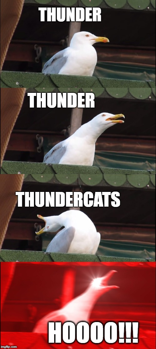 Am I the only one who misses that show? | THUNDER THUNDER THUNDERCATS HOOOO!!! | image tagged in memes,inhaling seagull | made w/ Imgflip meme maker