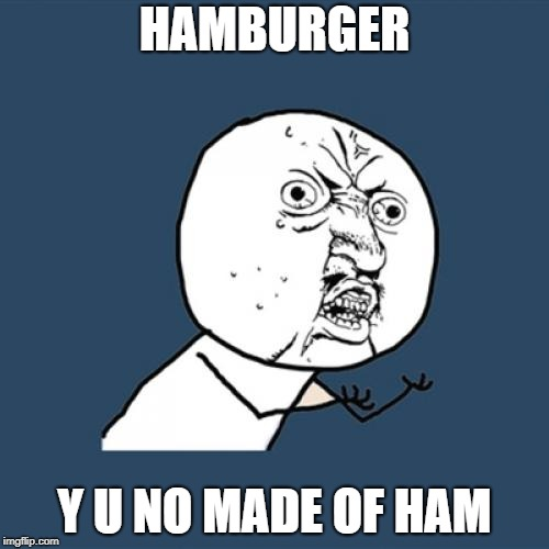 Y U NO Hamburger | HAMBURGER Y U NO MADE OF HAM | image tagged in memes,y u no,hamburger,ham | made w/ Imgflip meme maker