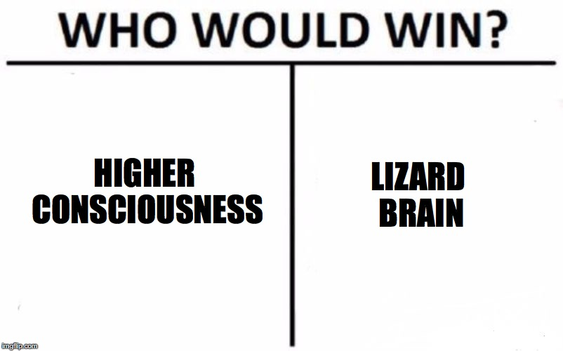 Who Would Win? Meme | HIGHER CONSCIOUSNESS LIZARD BRAIN | image tagged in memes,who would win | made w/ Imgflip meme maker