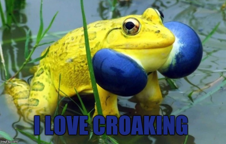 I LOVE CROAKING | made w/ Imgflip meme maker