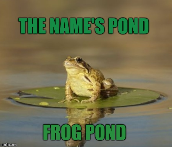 THE NAME'S POND FROG POND | made w/ Imgflip meme maker