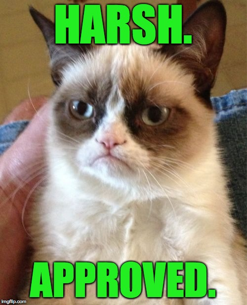Grumpy Cat Meme | HARSH. APPROVED. | image tagged in memes,grumpy cat | made w/ Imgflip meme maker