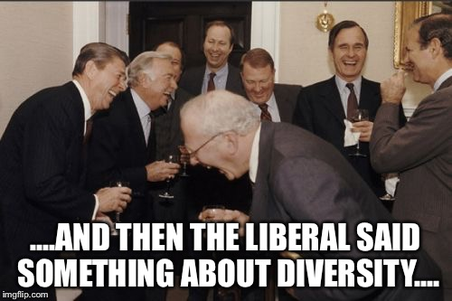 Laughing Men In Suits Meme | ....AND THEN THE LIBERAL SAID SOMETHING ABOUT DIVERSITY.... | image tagged in memes,laughing men in suits | made w/ Imgflip meme maker