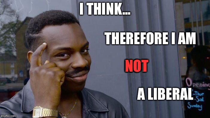 Roll Safe Think About It Meme | I THINK... THEREFORE I AM A LIBERAL NOT NOT | image tagged in memes,roll safe think about it | made w/ Imgflip meme maker