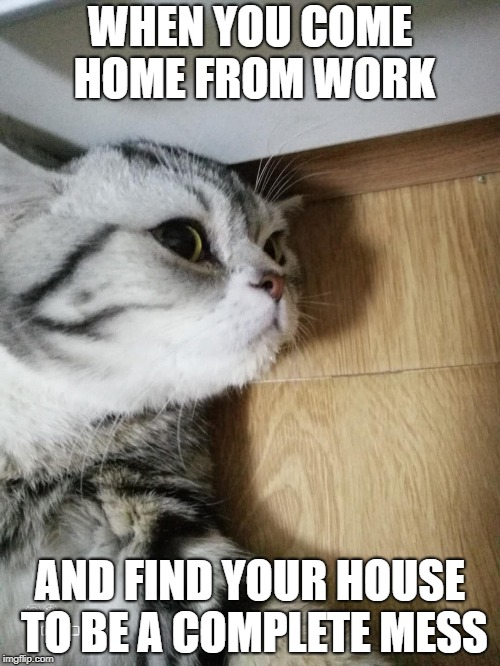 WHEN YOU COME HOME FROM WORK AND FIND YOUR HOUSE TO BE A COMPLETE MESS | image tagged in that feeling after working all day | made w/ Imgflip meme maker