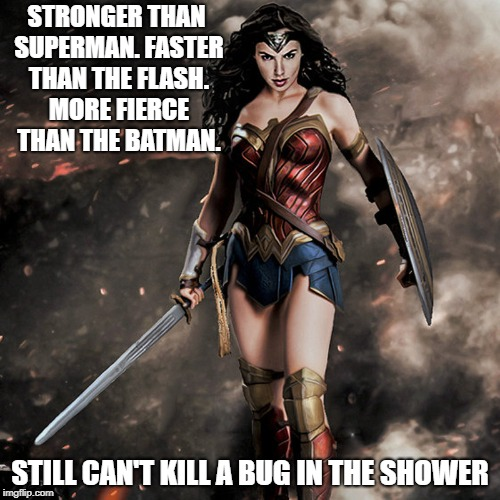 wonder woman  |  STRONGER THAN SUPERMAN. FASTER THAN THE FLASH. MORE FIERCE THAN THE BATMAN. STILL CAN'T KILL A BUG IN THE SHOWER | image tagged in wonder woman | made w/ Imgflip meme maker