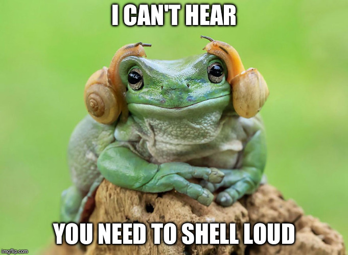 shelling loud | I CAN'T HEAR YOU NEED TO SHELL LOUD | image tagged in snail,frog week,frog puns,memes | made w/ Imgflip meme maker