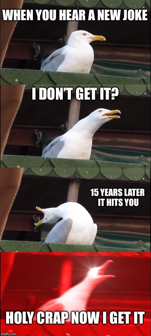 Inhaling Seagull Meme | WHEN YOU HEAR A NEW JOKE I DON'T GET IT? 15 YEARS LATER IT HITS YOU HOLY CRAP NOW I GET IT | image tagged in memes,inhaling seagull | made w/ Imgflip meme maker