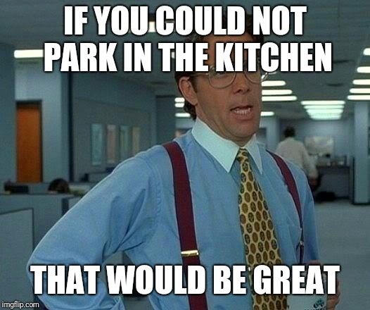 That Would Be Great Meme | IF YOU COULD NOT PARK IN THE KITCHEN THAT WOULD BE GREAT | image tagged in memes,that would be great | made w/ Imgflip meme maker
