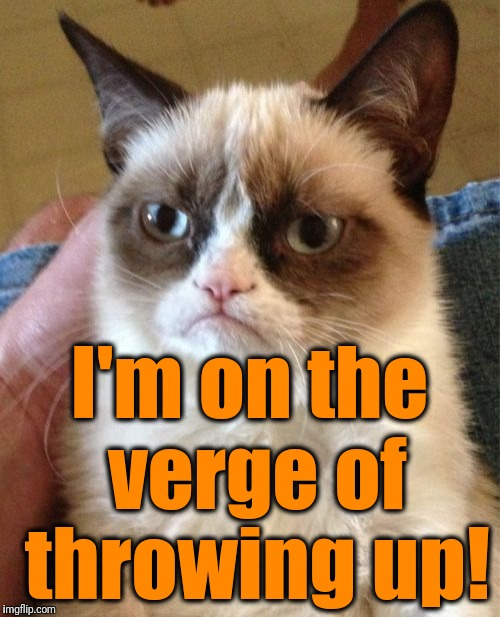 Grumpy Cat Meme | I'm on the verge of throwing up! | image tagged in memes,grumpy cat | made w/ Imgflip meme maker