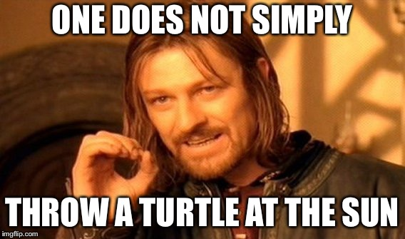 One Does Not Simply Meme | ONE DOES NOT SIMPLY THROW A TURTLE AT THE SUN | image tagged in memes,one does not simply | made w/ Imgflip meme maker
