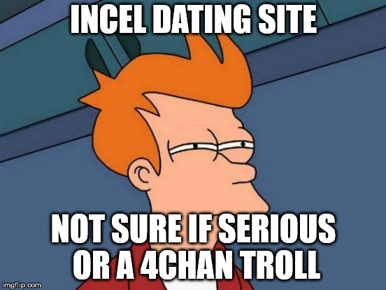 Futurama Fry Meme | INCEL DATING SITE NOT SURE IF SERIOUS OR A 4CHAN TROLL | image tagged in memes,futurama fry | made w/ Imgflip meme maker
