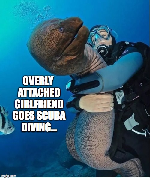 Simply Trying to Get Away | OVERLY ATTACHED GIRLFRIEND GOES SCUBA DIVING... | image tagged in overly attached girlfriend,scuba diving,hugs,eel,hugging | made w/ Imgflip meme maker