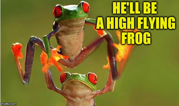 HE'LL BE A HIGH FLYING FROG | made w/ Imgflip meme maker