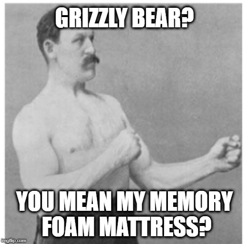 Overly Manly Man | GRIZZLY BEAR? YOU MEAN MY MEMORY FOAM MATTRESS? | image tagged in memes,overly manly man | made w/ Imgflip meme maker
