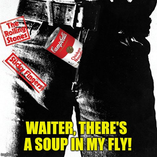WAITER, THERE'S A SOUP IN MY FLY! | made w/ Imgflip meme maker