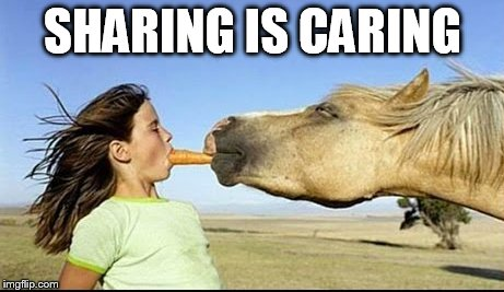 Sharing Is Caring  |  SHARING IS CARING | image tagged in sharing is caring,donkey,carrots,girl | made w/ Imgflip meme maker