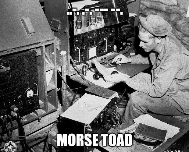 ..-. .-. --- --. | ..-. .-. --- --. MORSE TOAD | image tagged in memes,radio,code,frog,frog week | made w/ Imgflip meme maker