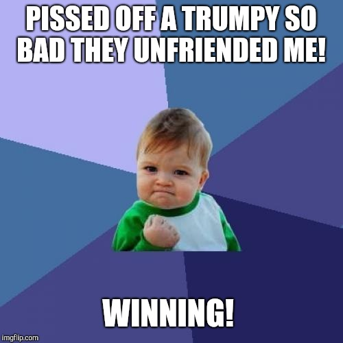 Winning!  | PISSED OFF A TRUMPY SO BAD THEY UNFRIENDED ME! WINNING! | image tagged in memes,success kid,donald trump,trumpy | made w/ Imgflip meme maker