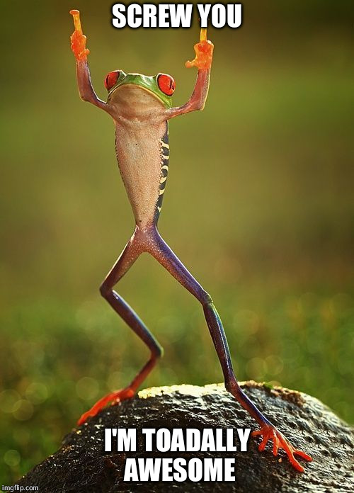 awesome frog | SCREW YOU I'M TOADALLY AWESOME | image tagged in memes,frog,frog week,screw you,jumping | made w/ Imgflip meme maker