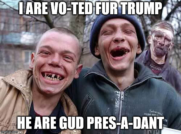 I ARE VO-TED FUR TRUMP HE ARE GUD PRES-A-DANT | image tagged in toothless redneck,meme,redneck,stupid people | made w/ Imgflip meme maker