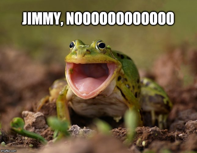 JIMMY, NOOOOOOOOOOOO | made w/ Imgflip meme maker