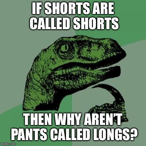 My leg hairs are sizzling  | IF SHORTS ARE CALLED SHORTS THEN WHY AREN'T PANTS CALLED LONGS? | image tagged in memes,philosoraptor,pants,shorts,summer,funny | made w/ Imgflip meme maker