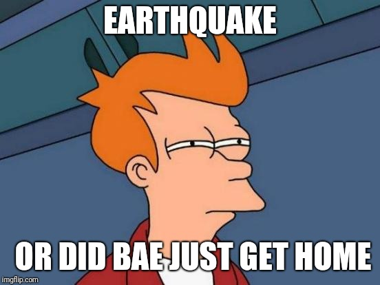 Futurama Fry Meme | EARTHQUAKE OR DID BAE JUST GET HOME | image tagged in memes,futurama fry | made w/ Imgflip meme maker