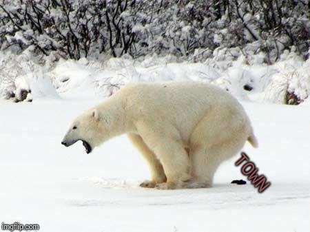 Polar Bear Shits in the Snow | TOWN | image tagged in polar bear shits in the snow | made w/ Imgflip meme maker