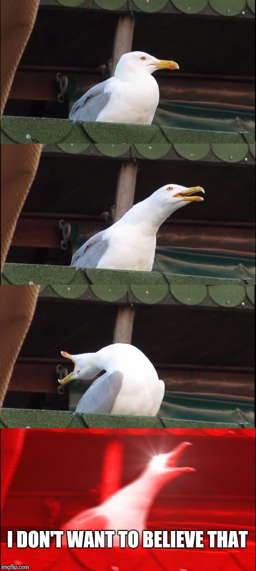 Inhaling Seagull Meme | I DON'T WANT TO BELIEVE THAT | image tagged in memes,inhaling seagull | made w/ Imgflip meme maker