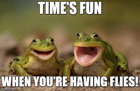 Frog fun | TIME'S FUN WHEN YOU'RE HAVING FLIES! | image tagged in two happy frogs,frogs,flies,bad puns | made w/ Imgflip meme maker