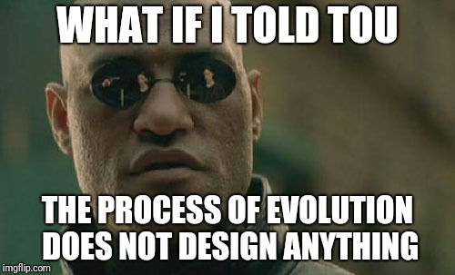 Matrix Morpheus Meme | WHAT IF I TOLD TOU THE PROCESS OF EVOLUTION DOES NOT DESIGN ANYTHING | image tagged in memes,matrix morpheus | made w/ Imgflip meme maker