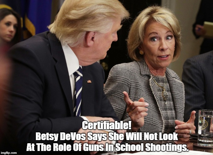 Certifiable! Betsy DeVos Says She Will Not Look At The Role Of Guns In School Shootings. | made w/ Imgflip meme maker
