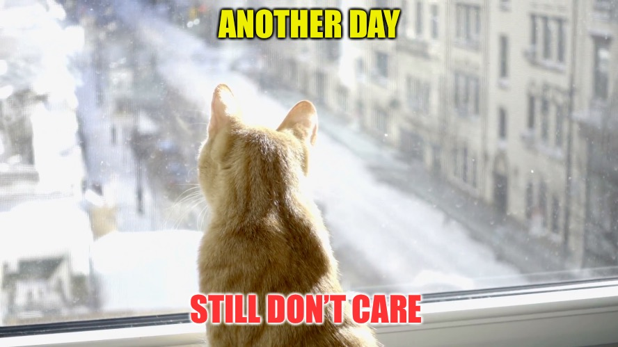 ANOTHER DAY STILL DON'T CARE | made w/ Imgflip meme maker