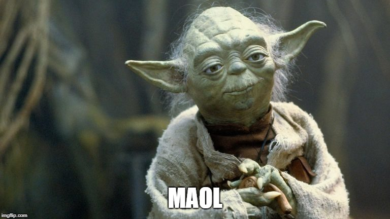 yoda | MAOL | image tagged in lmao | made w/ Imgflip meme maker
